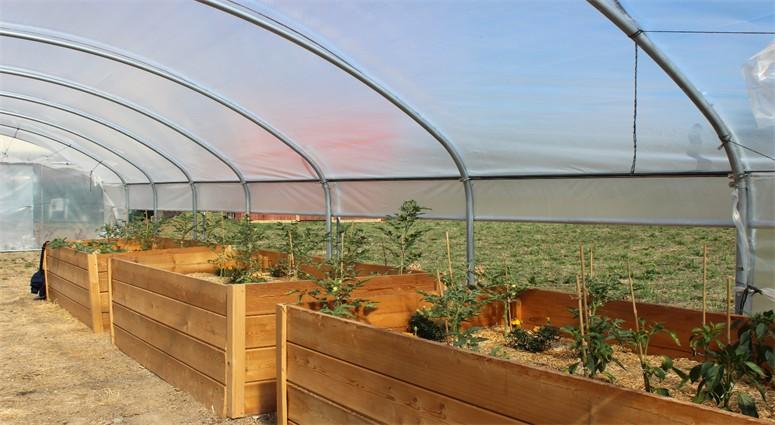 Une première en France, une ferme urbaine est née à Dutemple.