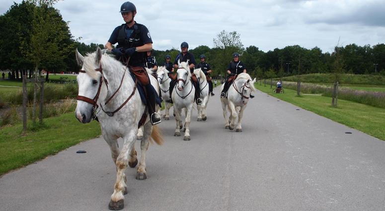 La brigade équestre débarque au Parc de Loisirs à Raismes