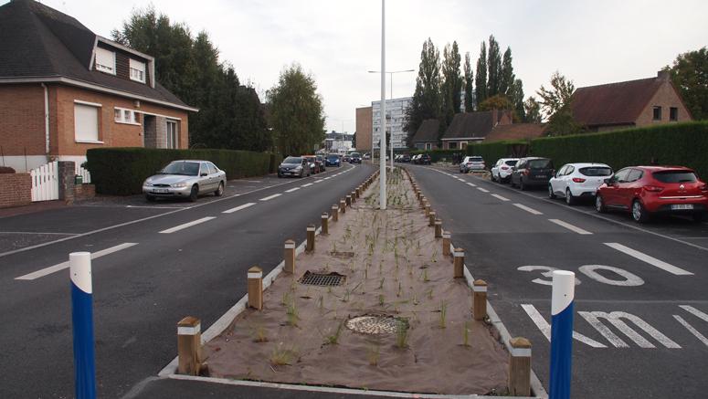 Une avenue avec des fossés naturels en guise de terre-pleins