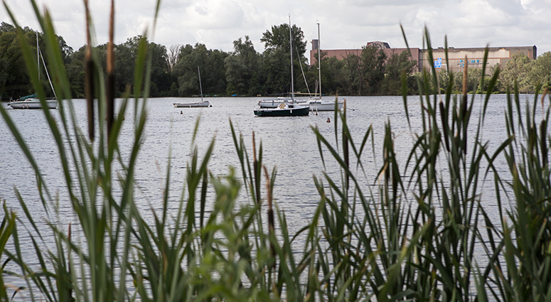 Nouveau souffle pour le poumon vert de Valenciennes