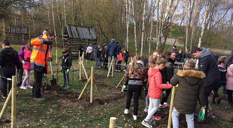 La fête de l'arbre… pédagogique au Parc de la Porte du Hainaut