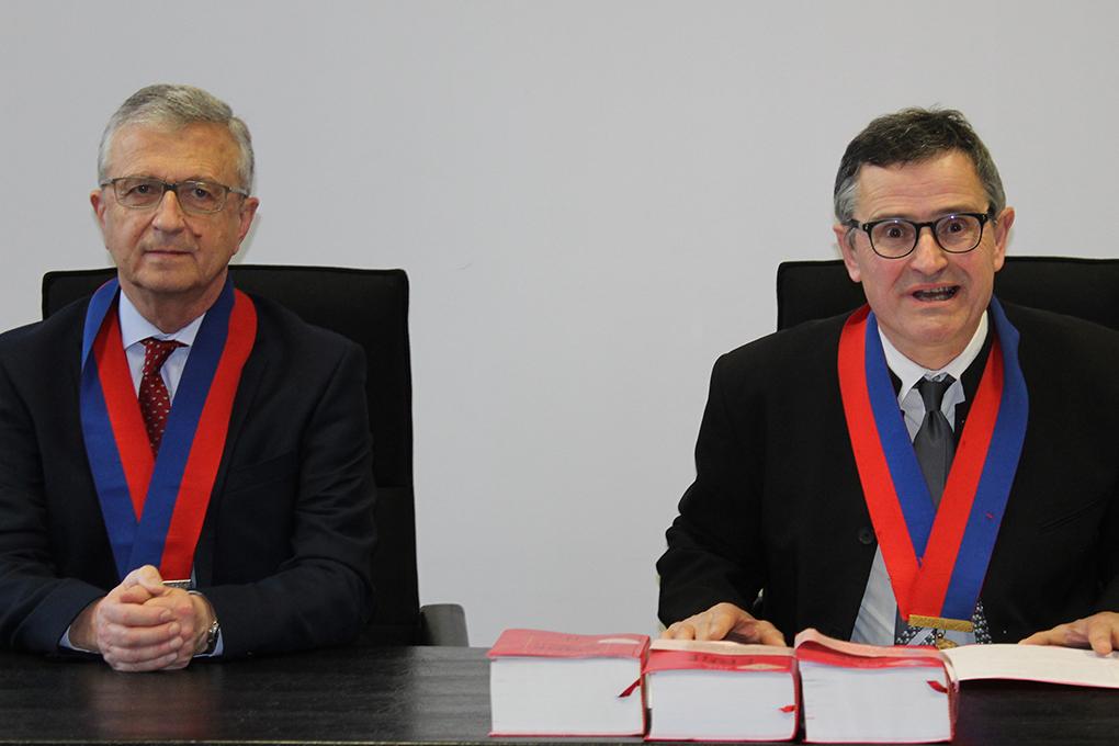 Francois Illas New Tradition: Les Nouveaux Conseillers Prud'homaux Face Aux Ordonnances